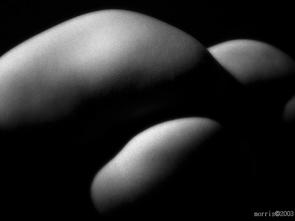 natural light abstract nude